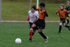 BPFC Black vs Peters Twp pg 1 - Picture 37
